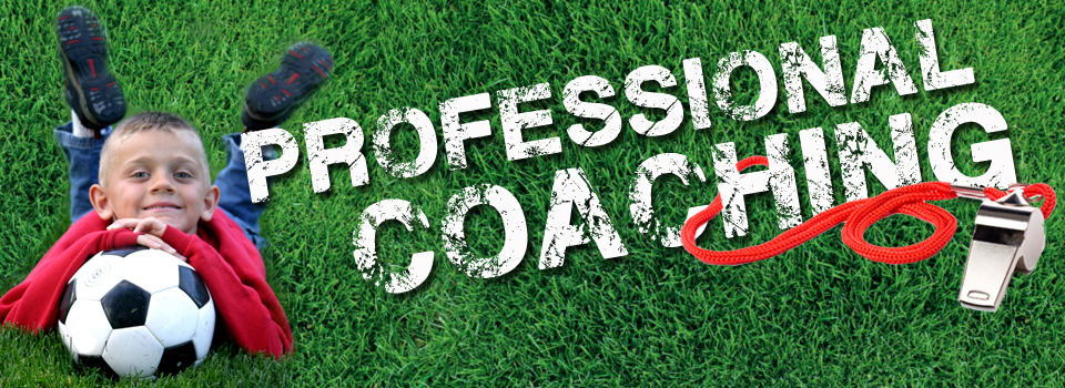 We provide professional coaching